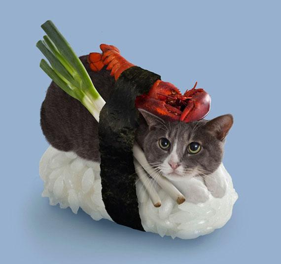 Un sushi cat avec un homard et un poireau
