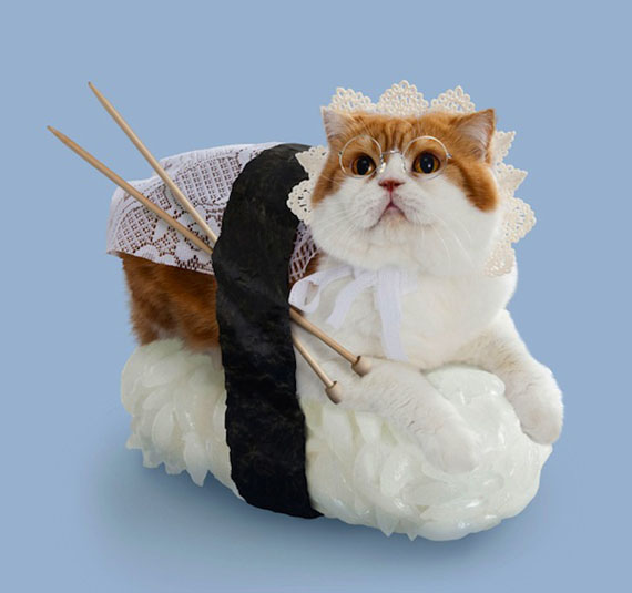 Un sushi cat avec de la dentelle