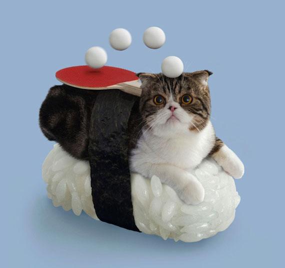 Un sushi cat avec une raquette de ping pong