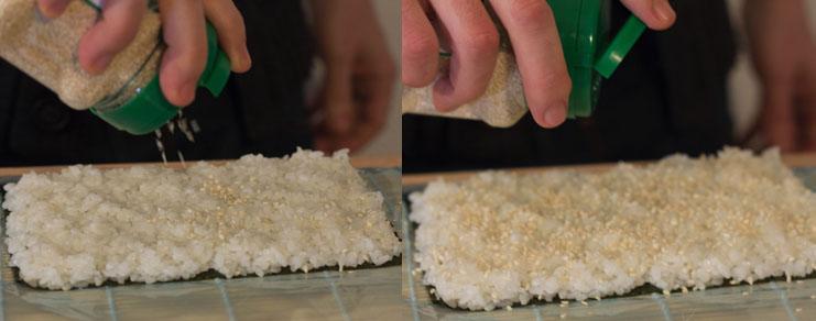dispersion des graines de sésame sur le riz